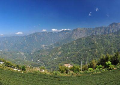 Hory a čajové plantáže v okrese Nantou na Taiwanu