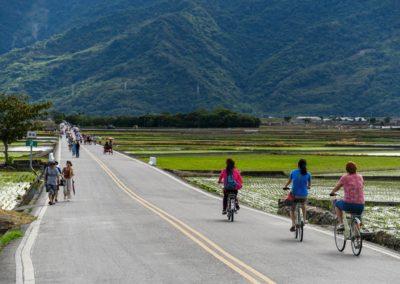 Pohodový výlet na kole po rýžových polích východního Taiwanu