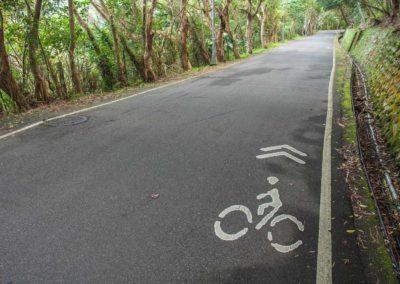 Cyklostezka v národním parku Yangmingshan