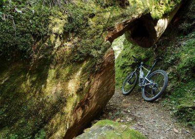 MTB stezka Bafu Trail na severu Taiwanu