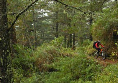 Jízda pralesem na kole na ostrově Taiwan