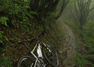 Stezka pro horská kola v národním parku Yangmingshan na okraji Taipei