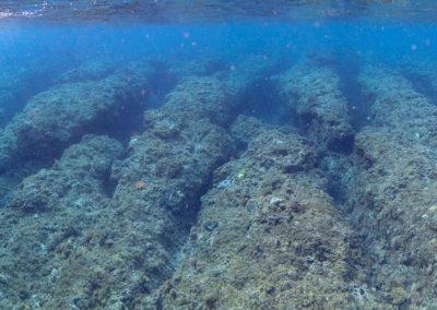 Korálové útesy na jihu Taiwanu
