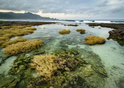 Divoké mořské pobřeží východního Taiwanu